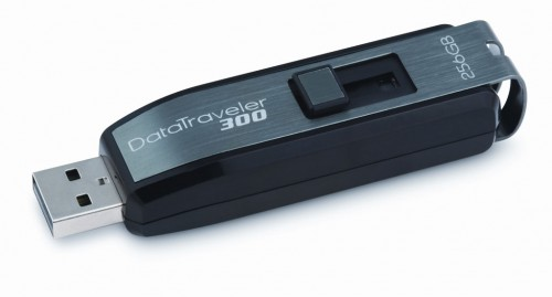 kingston datatraveler 256gb flash drive