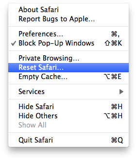 How to Delete all the Private data in Safari browser?