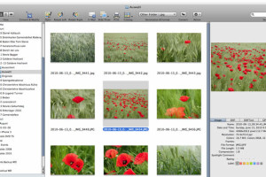 Graphic Converter – Advanced Photo Editing Tool for MAC
