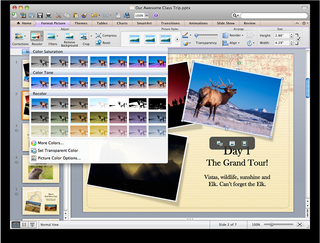 microsoft office mac image editor