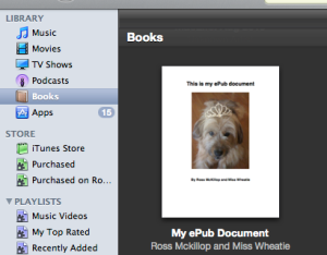 epub final document