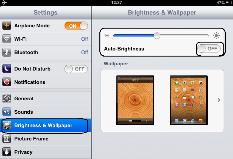 iPad Mini Battery Brightness setting