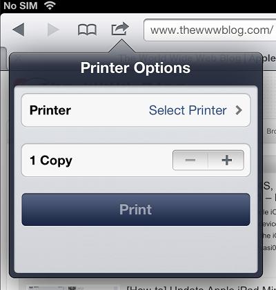 iPad Printer Options