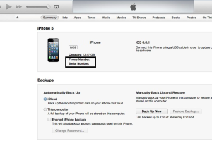 How to Find Serial Number, IMEI of Apple iPhone on iTunes With / Without Connection