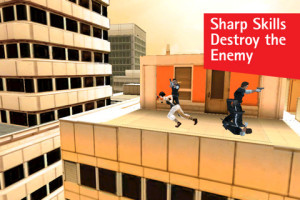 Mirrors Edge iPad