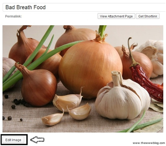 Wordpress Edit Image