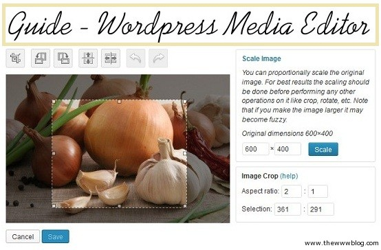 Wordpress Media Editor