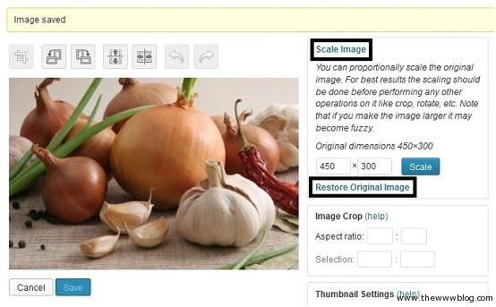 Wordpress Scale Image